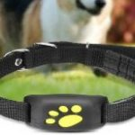 10 GPS Wireless dog Fence Reviews 2020 - Do Not Buy Before Reading This!