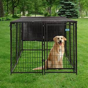 Best GPS Dog Fence Reviews Cyber Monday